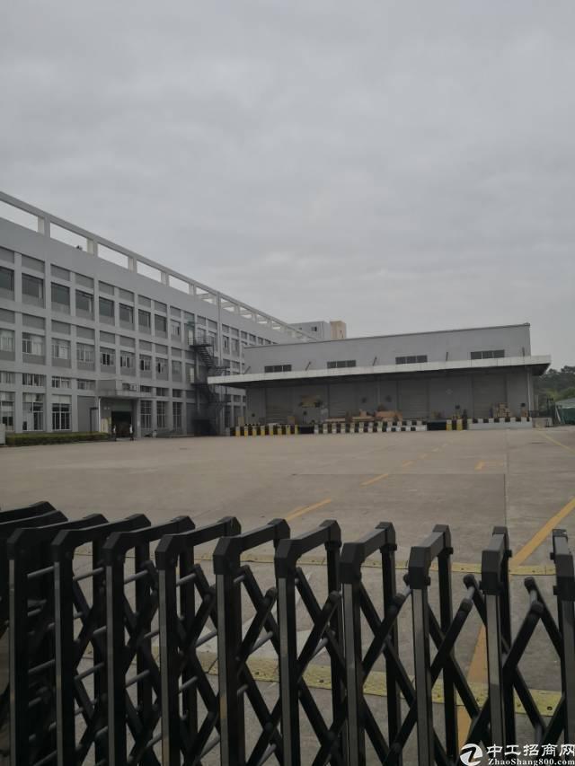 坪山工业区附近原房东独院6200平出售