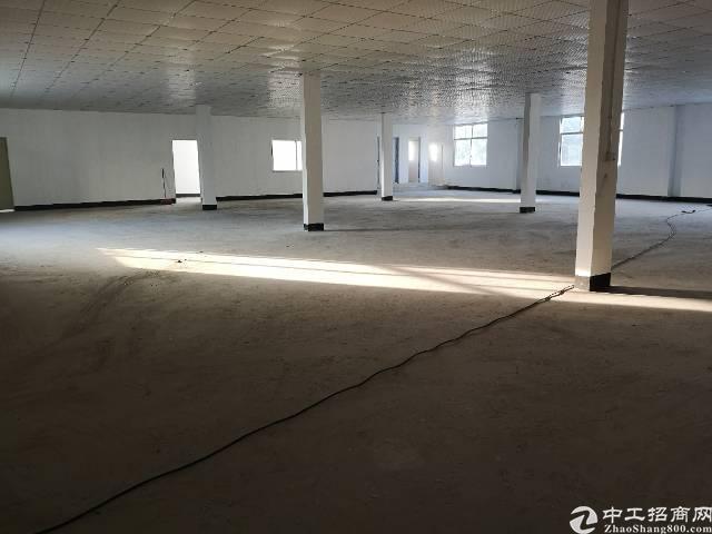 沙井宝安大道边新出700平方红本厂房出租-图2
