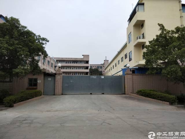 清溪6600平方米独院厂房出售