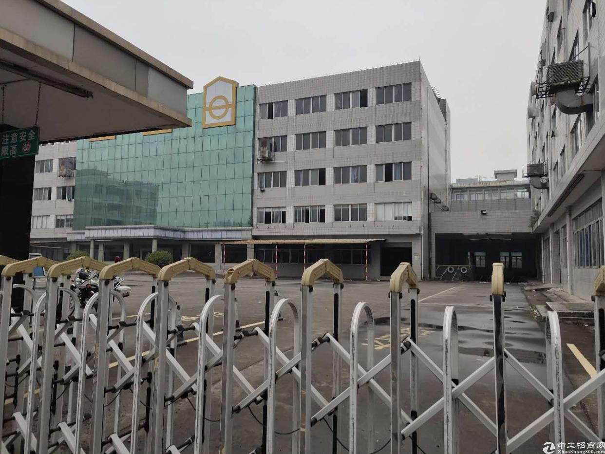 虎门沿江高速原房东厂房