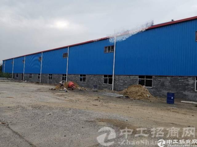永湖全新独门独院9米滴水厂房出租
