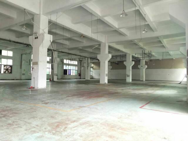 松岗高速出口燕川工业区一楼1600平米6米高厂房出租