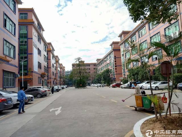 出租福永107国道附近工业园区1380平米整层带精装修厂房