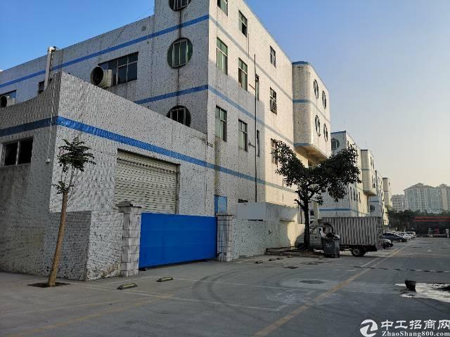 沙井东环路边上新出一楼1100平方带红本厂房出租-图2