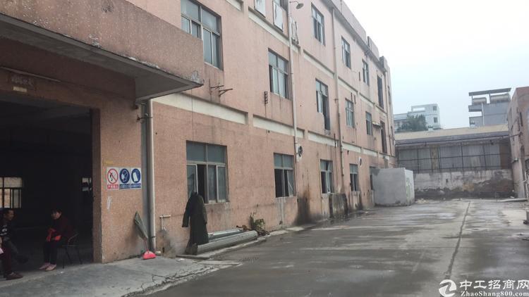 公明楼村新出楼上厂房650平仅租15元带办公室出租