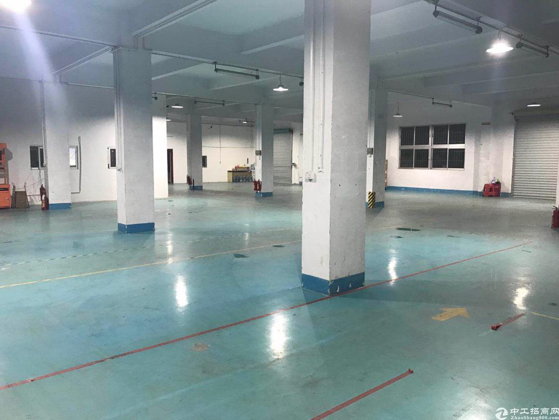 深圳观澜1楼带地坪漆厂房