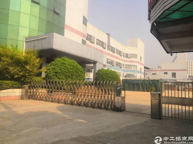 沙井南环路边新出原房东实际面积6000平带装修厂房