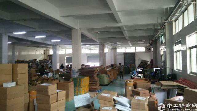 福永桥头新出一楼1200平物流仓储