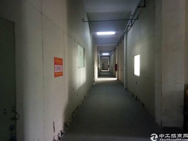 清溪车站附近新出带现成装修厂房350㎡出租-图2