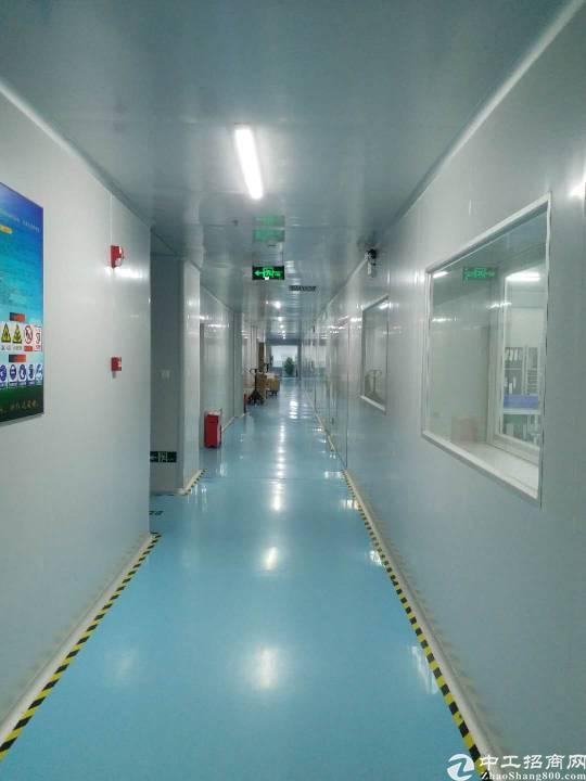 福永沿江高速1500平带装修厂房