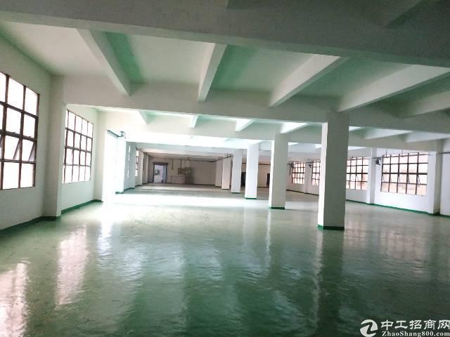 平湖带装修红本厂房