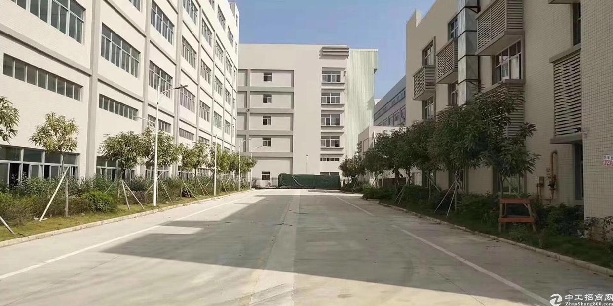 福永原房东厂房8500平方大小可分租