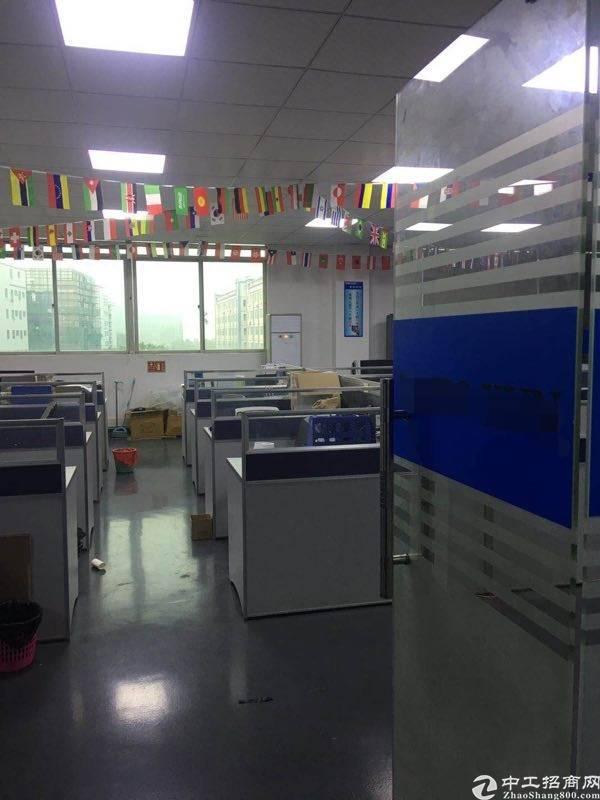 坂田上雪工业区红本独院带装修厂房