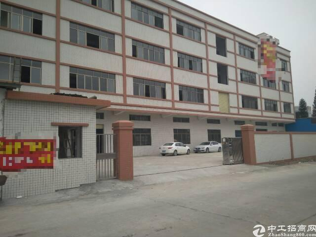 惠州博罗全新标准工业厂房招租