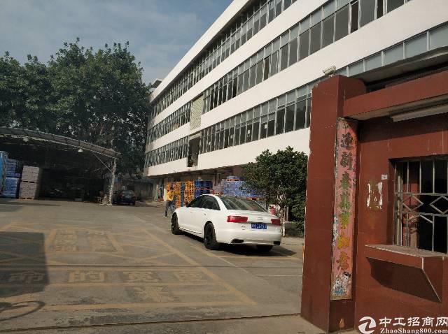 福永凤凰整层1200平方原房东厂房出租