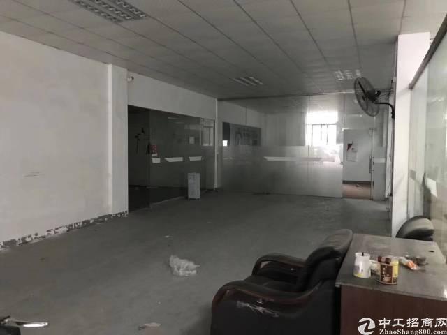 坂田杨美一楼500平带装修厂房出租