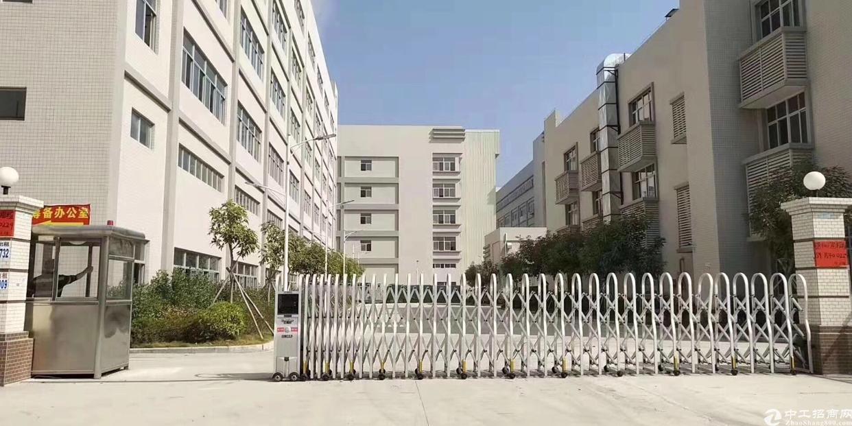 福永原房东独门独院厂房8675平方大小可分租-图4