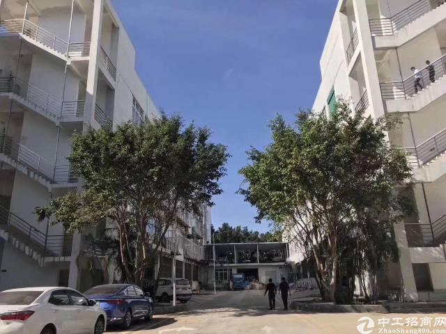 龙岗宝龙原房东独门独院厂房37800平方出租,可以分租!