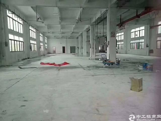 沙井国道边1-3层3300平米原房东独院厂房出租