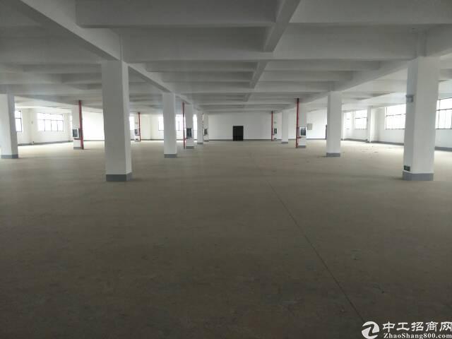光谷轻工制造工业园1000平米厂房出租。配套食堂,宿舍。