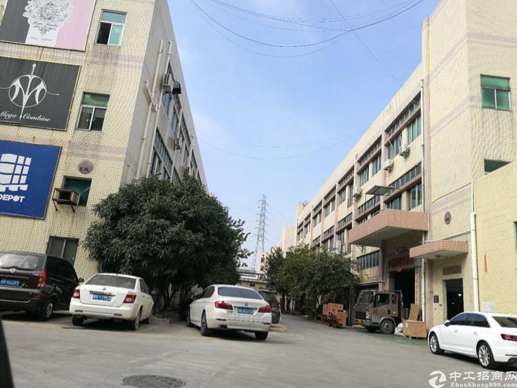 沙井共和新出花园式厂房空地大有豪华装修