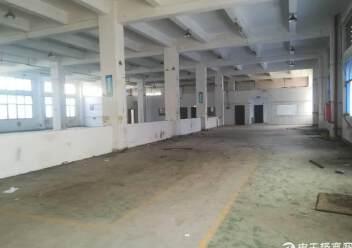 出租宝安区福永镇凤凰107国道旁精品厂房一楼2200平方图片4