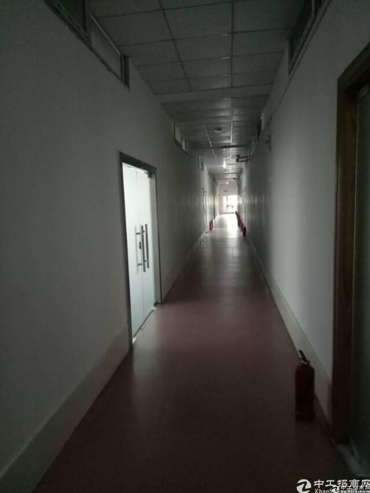 布吉吉华路长龙地铁口空出办公室了300平出租
