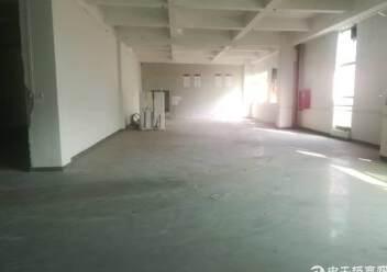 出租宝安区福永镇凤凰107国道旁精品厂房一楼2200平方图片3