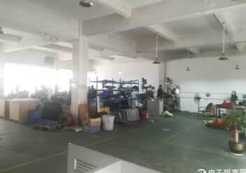 出租宝安区福永镇凤凰107国道旁精品厂房一楼2200平方图片2
