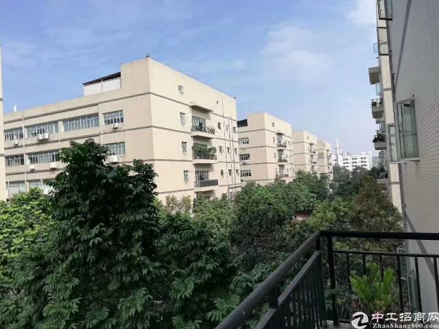 福永桥头地铁口一楼1300原房东厂房出租