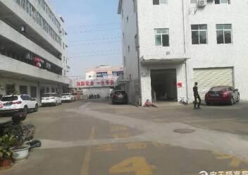 出租宝安区福永镇凤凰107国道旁精品厂房一楼2200平方图片5