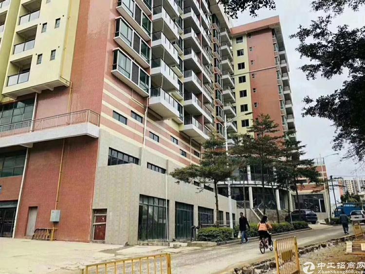福永2426平红本厂房出售