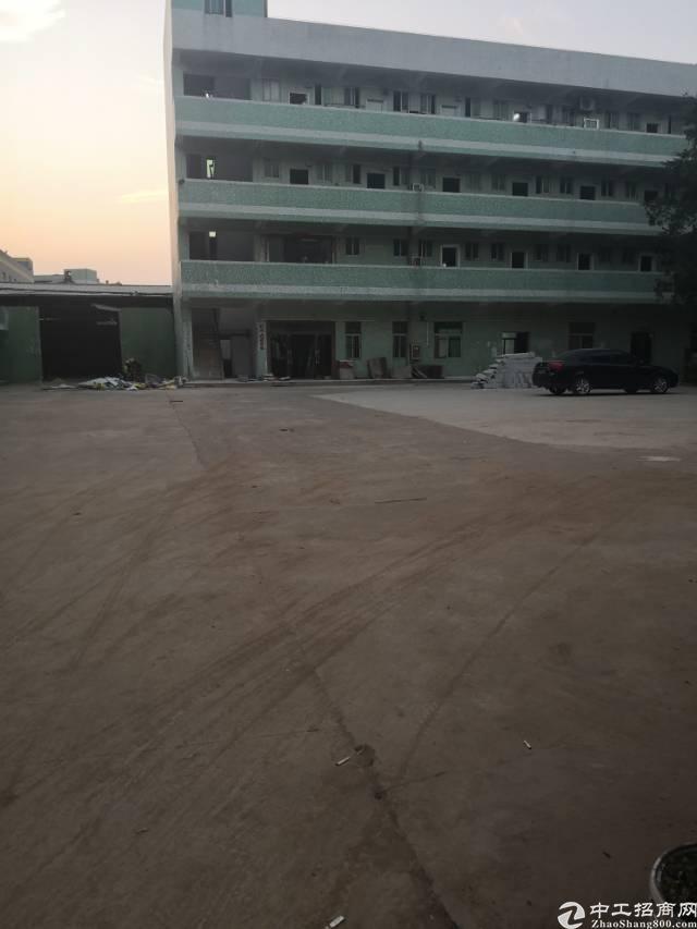 坪山坑梓原房东独院5800平出售
