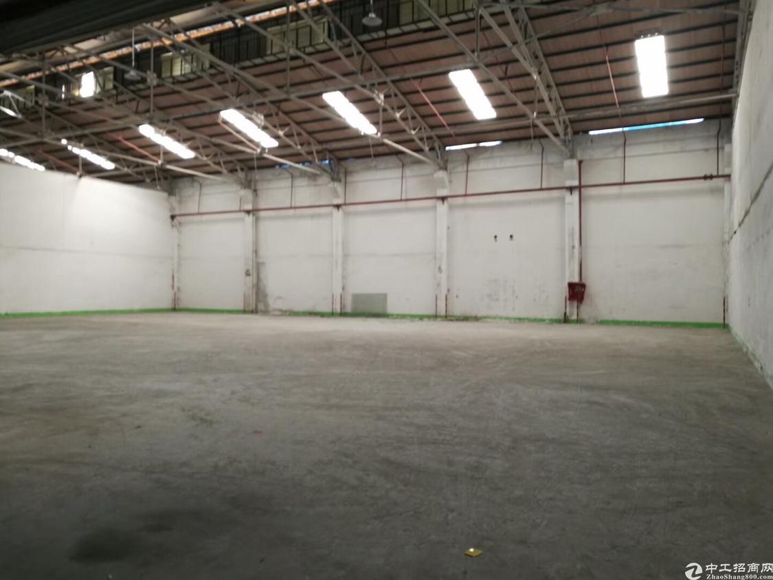 西乡新出1100平铁皮钢构厂房物流.仓库优选之地