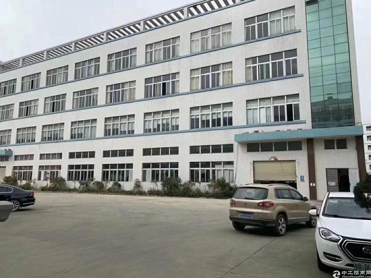 同乐新出标准一楼厂房1560平方米出租