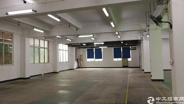 布吉杨美地铁口3楼整层1260平方精装修厂房出租,可以分租