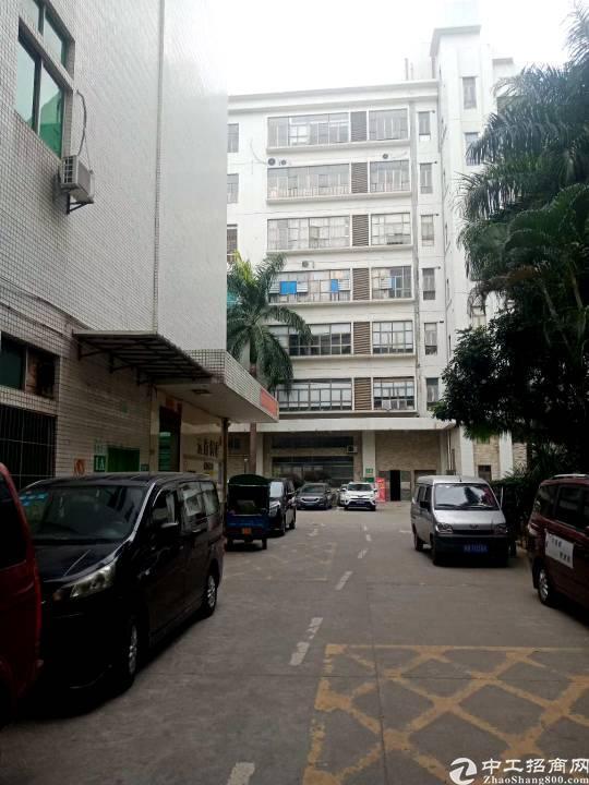 布吉丹竹头新出楼上380平米可分租