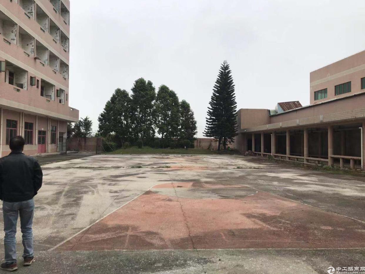 东莞万江区国有证独院厂房出售6500平方