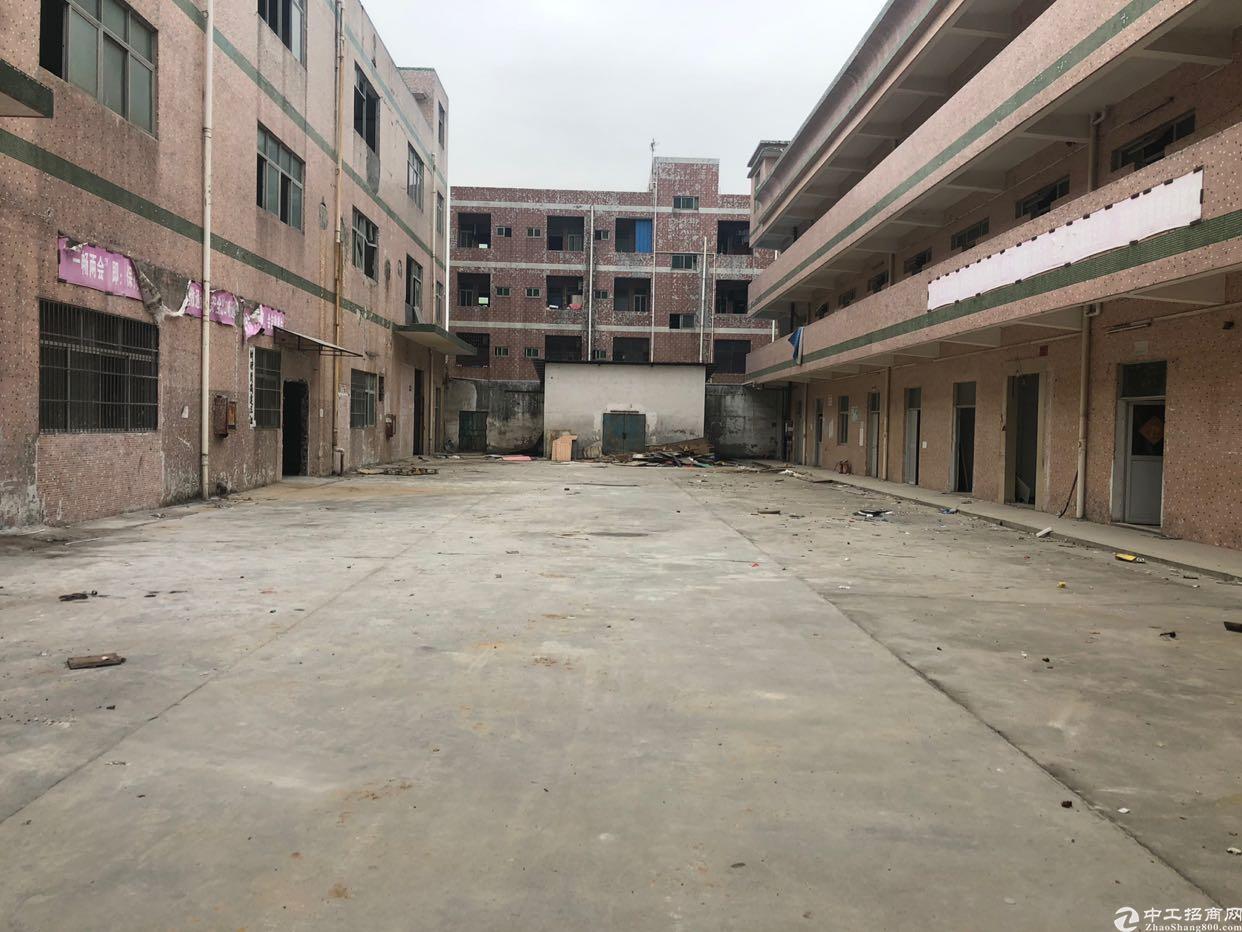 坪山碧岭工业区新出原房东独院6000平方出售
