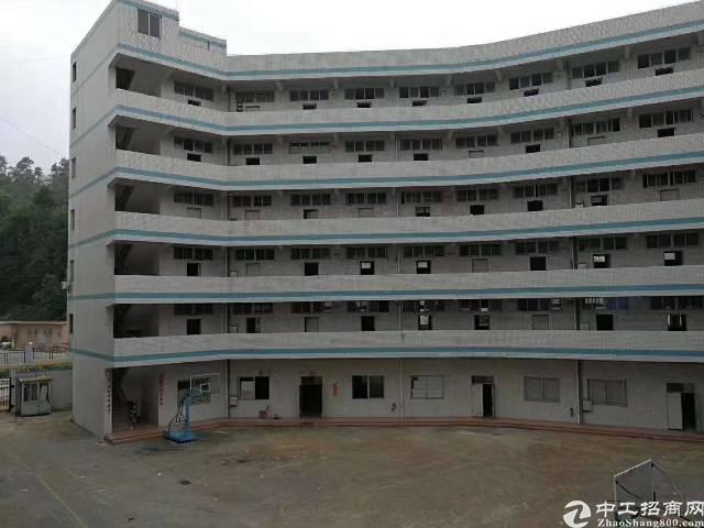 凤岗靠近平湖新空出一楼6米高独院厂房1-4层