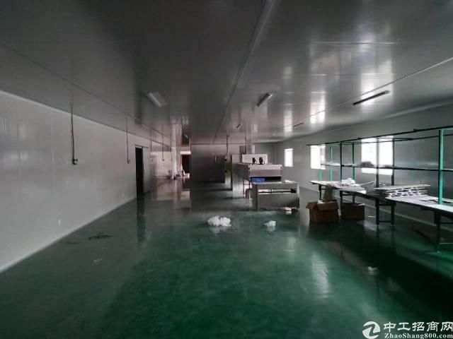惠州新出标准厂房带地坪漆2000平方低价出租