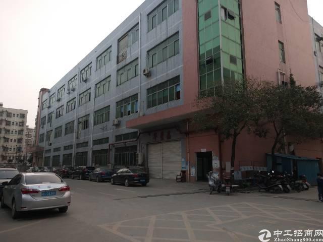 沙井新出楼上半层1500平米厂房出租