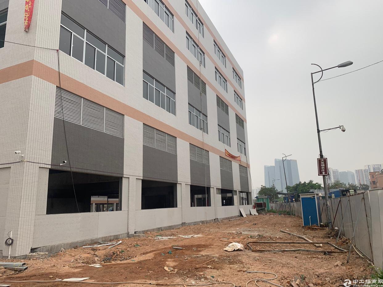 广州番禺区独门独院厂房40000平方大小可以分租