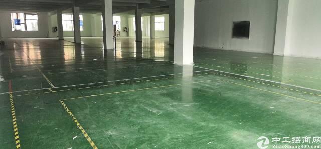 龙华福龙路高使用率红本厂房800平年前免租金