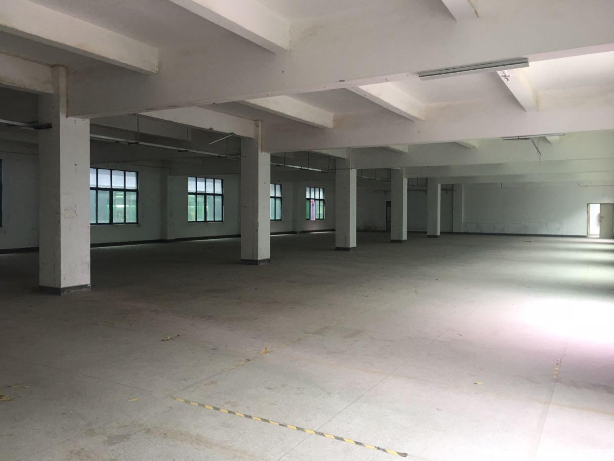 惠州博罗独院厂房6300平出售