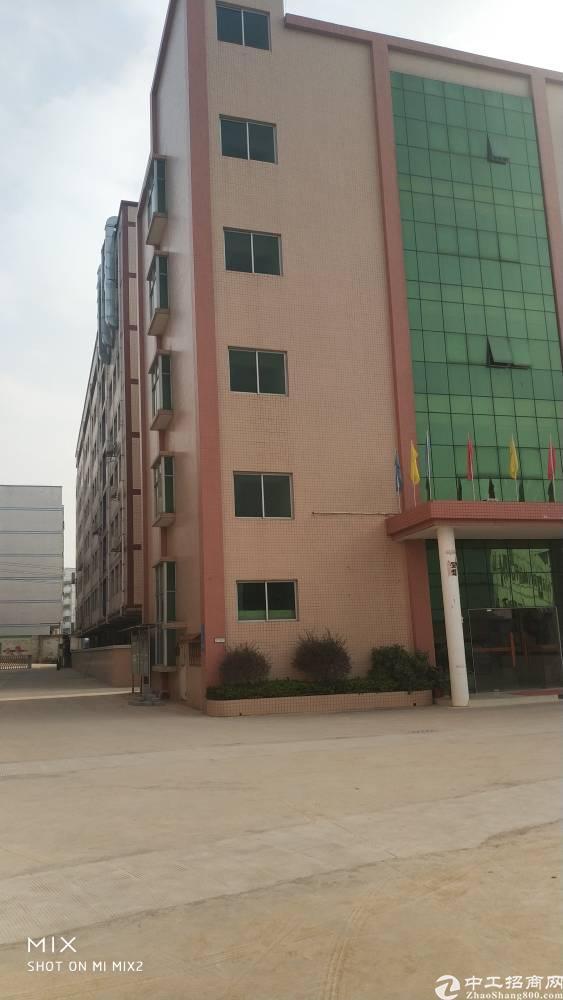 龙岗坪地标准厂房一楼3200平出租