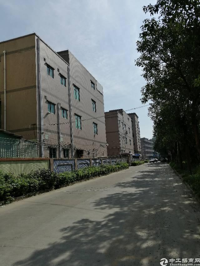.茶山镇成熟工业区出售:占地102亩