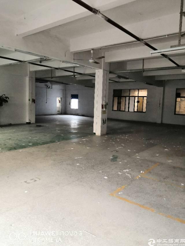 平湖广场新出楼上厂房出租