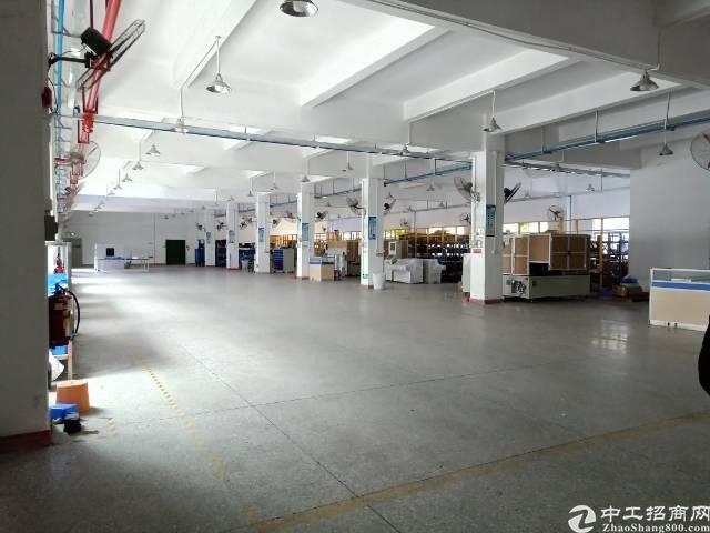 坪山新出村委厂房一楼1500平出租,实际面积
