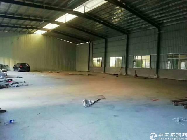 新空出1300平独院钢构厂房,滴水6.5米,带隔热层,交通便